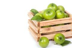 jabłko - jujuby zielona małpa Obraz Royalty Free