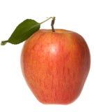 jabłko - liść zielona czerwień zdjęcia stock