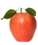 jabłko - liść zielona czerwień zdjęcia royalty free