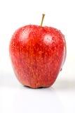 jabłko odizolowywający czerwieni mokry biel Zdjęcie Stock