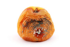 jabłko przegniły zdjęcia stock