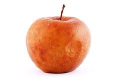 jabłko przegniły fotografia stock