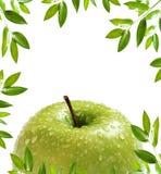 jabłko rama obrazy royalty free