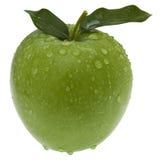 jabłko - zieleń odizolowywający liść Fotografia Stock
