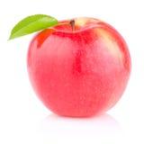 jabłko - zielony soczysty jeden czerwony liść biel Obraz Royalty Free