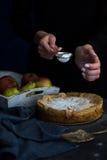jabłkowe ciasto domowej roboty Jabłczanego kulebiaka tarta, składniki i cynamon na nieociosanym drewnianym tle, - jabłka Zdjęcia Stock