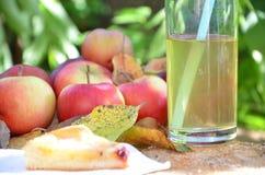 jabłkowe ciasto domowej roboty organicznie świezi piękni czerwoni jabłka w wiosce w ogródzie na drewnianej powierzchni na fiszork obraz royalty free