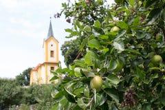 Jabłoń blisko kościół w wiosce zdjęcia royalty free