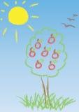 Jabłoń przeciw niebieskiemu niebu Obraz Royalty Free