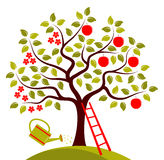 Jabłoń w dwa sezonach Obrazy Stock