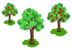 Jabłoń z zieleń liśćmi i Czerwonymi owoc Ustawiającymi Zdjęcia Stock