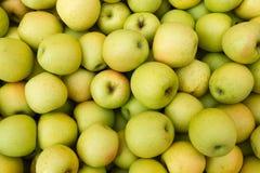 Jabłczana owoc obrazy royalty free