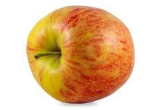 Jabłczana pracowniana fotografia Obraz Royalty Free