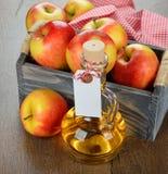 Jabłczanego cydru ocet Obraz Royalty Free