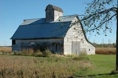 jabłczanej stodole opuszczony drzewo Zdjęcia Royalty Free