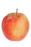 jabłczany czerwony biel Zdjęcie Royalty Free