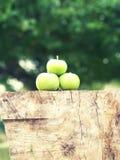 Jabłczany drewno obrazy stock