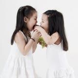 jabłczany gryzienie Obraz Stock