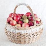 jabłczany kosz Zdjęcia Royalty Free