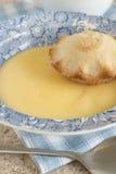 Jabłczany kulebiak I Custard Zdjęcie Stock