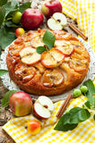 jabłczany tort Zdjęcie Stock
