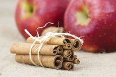 jabłek cynamonu kije Zdjęcie Stock
