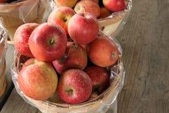 jabłek gospodarstwa rolnego stojak Zdjęcie Royalty Free