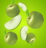 jabłek soczysty sekcj wektor Fotografia Stock