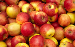 jabłka Fotografia Stock