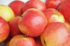 jabłka czerwoni Obrazy Royalty Free