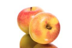 jabłka dwa Zdjęcie Stock