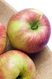 jabłka honeycrisp Zdjęcia Stock