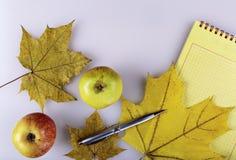 Jabłka i notepad Fotografia Royalty Free