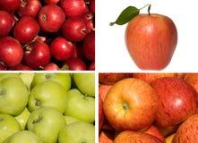 jabłka inkasowi obrazy royalty free