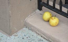 Jabłka na przygarbieniu obrazy stock