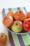 jabłka r do domu Obrazy Royalty Free