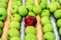 Jabłka sortuje i pakuje Obrazy Stock