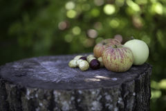 Jabłka, truskawki, agresty na drewnianym tle Zdjęcie Stock