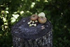 Jabłka, truskawki, agresty na drewnianym tle Zdjęcie Royalty Free