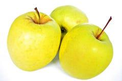 jabłka trzy Fotografia Stock