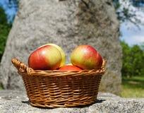 Jabłka w koszu Obrazy Stock