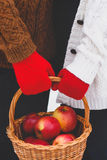 Jabłka w koszu Obraz Stock