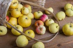 Jabłka w koszu na stole Fotografia Royalty Free