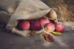 Jabłka w torbie fotografia stock