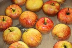 Jabłka w wodzie Zdjęcia Stock