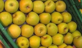 jabłka zdrowi Zdjęcia Royalty Free