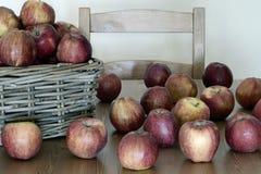 jabłko babcia Zdjęcia Stock