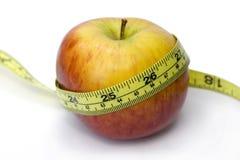 jabłko biurokracji linii obrazy stock
