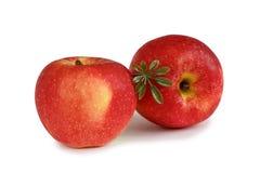 jabłko czerwony 2 Zdjęcia Royalty Free