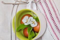 jabłko kwiaty Wielkanoc jaj Obraz Stock